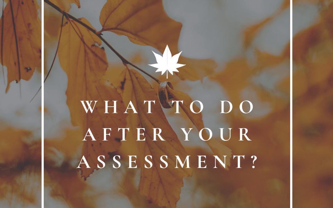 What Happens After an Assessment?